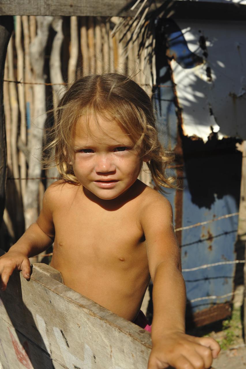 Imagens do livro Traços do Brasil