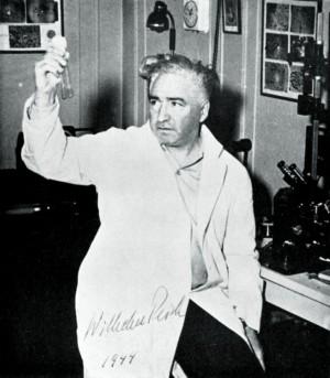 Reich em seu laboratório em 1944