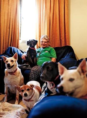 Neide e seus cachorros em seu apartamento de 30 m2 na Cohab Itaquera. Por mês, a aposentada gasta mais de metade de sua pensão com seus animais
