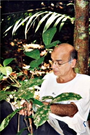 Registros das viagens à Amazônia, onde desde 1992 faz pesquisas de biotecnologia