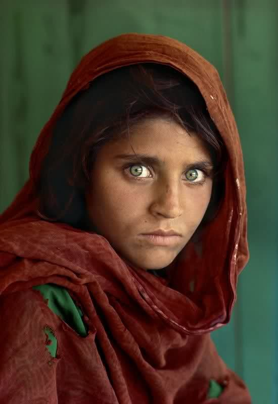 Afghan girl [1984]