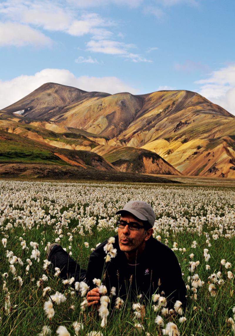 Livre, leve e solto; Islândia 2008