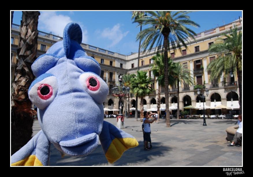 Bicho de pelúcia conhece a Plaza Real