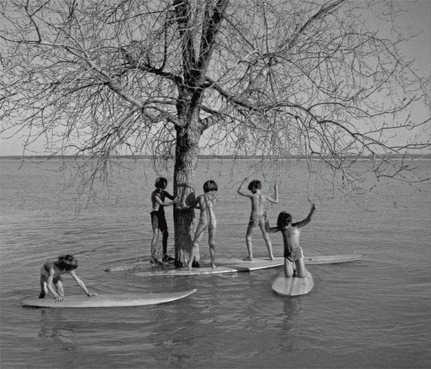 Surf tamanho família