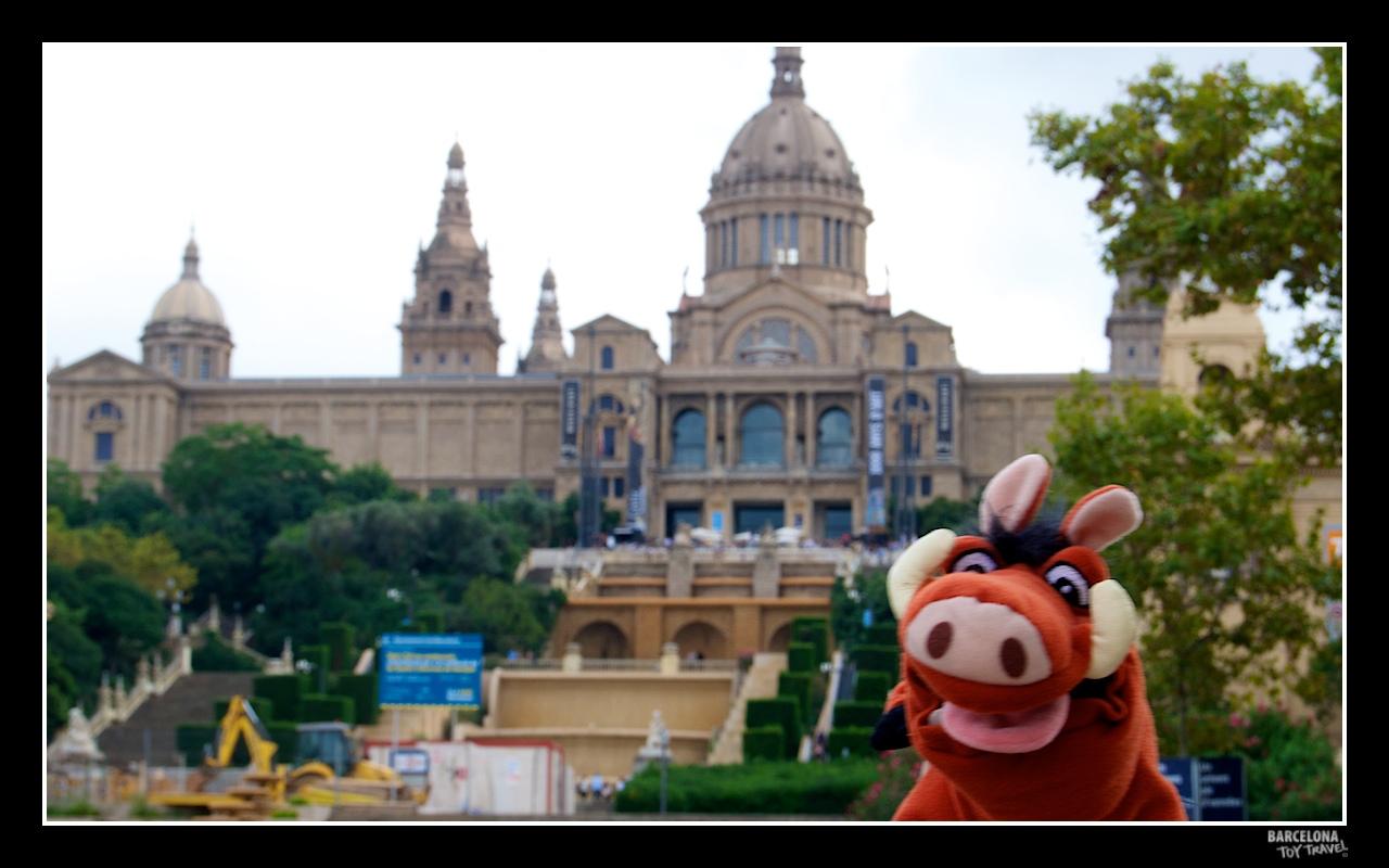 Um porco (javali) na Plaza de España