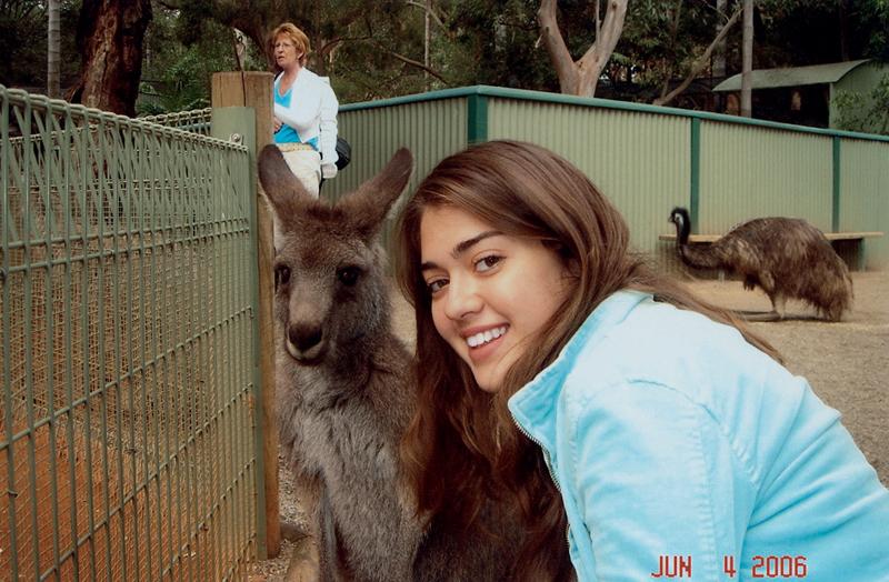Grazi com um canguru australiano