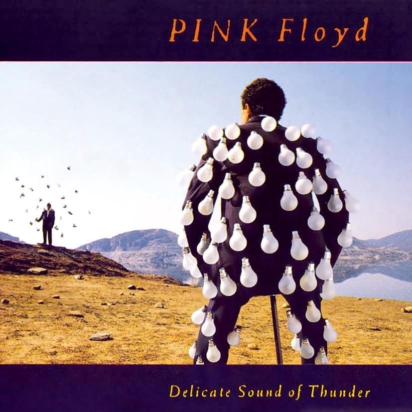 Apesar de bem executado ao vivo, Delicate sound of thunder, de 1988, não passa de um esforço para preencher o buraco nostálgico que Roger Waters deixou em seus fãs ao sair do Pink Floyd
