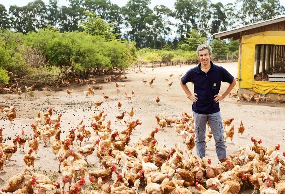 Pedro entre as galinhas da fazenda