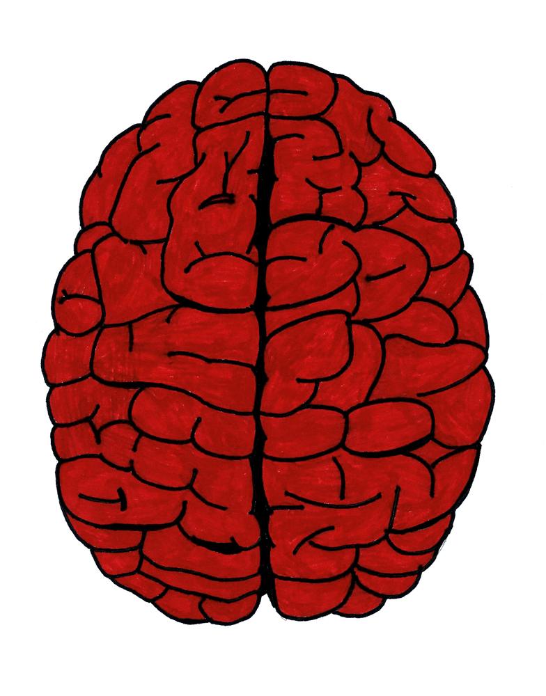 Atividade cerebral: Diante de situações de ameaça, o cérebro emite sinais às glândulas suprarrenais, dando início à produção e à liberação de 30 hormônios diferentes na corrente sanguínea, incluindo adrenalina, cortisol e noradrenalina