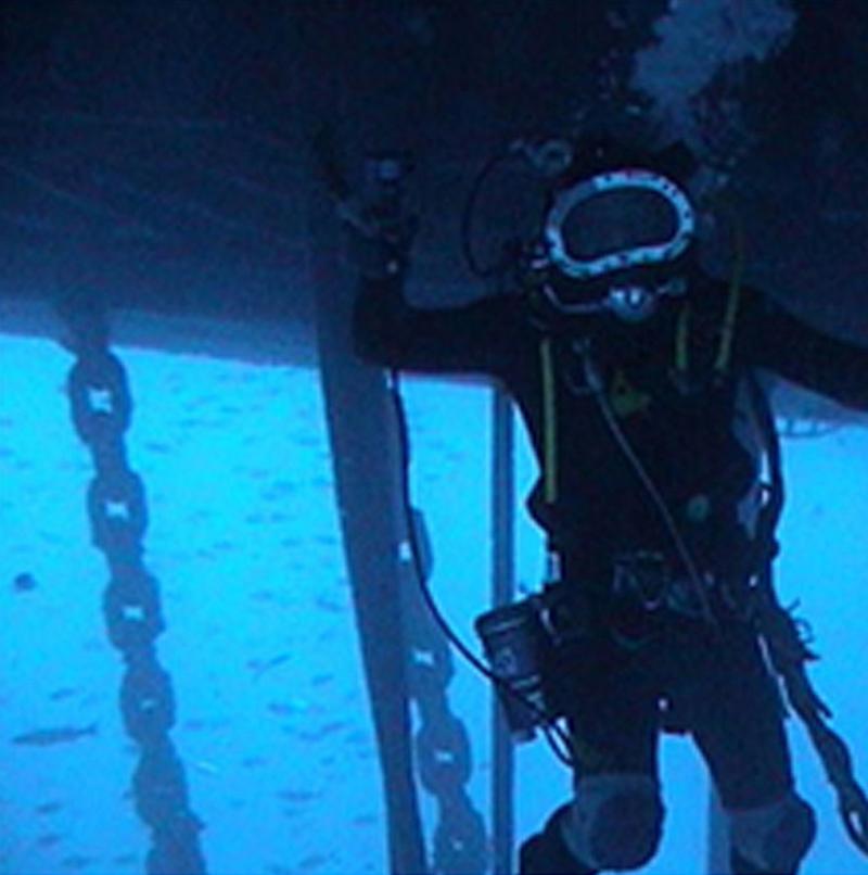 Mergulhador em atividade