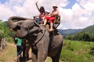 Andando de elefante em Chiang Mai, Tailândia