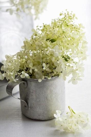 Uma leiteira antiga e um punhado de flores