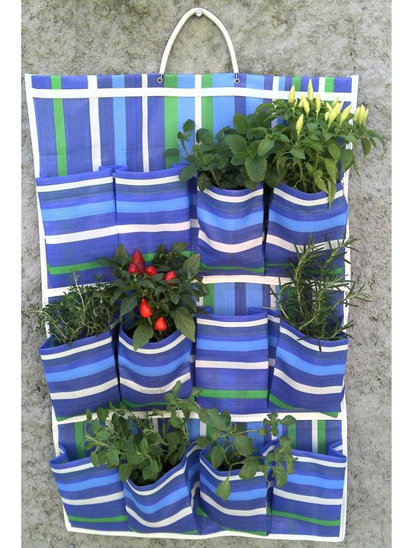 Mini horta montada em sapateira de fibra sintética, daquelas bem baratinhas que são vendidas em lojinhas de bairro