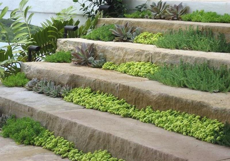 Se a sua escada é na área externa da casa, uma dica fácil e de baixo custo é deixar um espaço entre os degraus onde seja possível colocar terra para plantar algum tipo de vegetação. Mas atenção: os pisos dos degraus devem ser suficientemente largos para que ninguém pise nas plantinhas