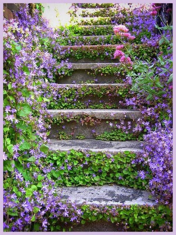 Ou então você pode plantar apenas na lateral da escada. Dependendo do tipo de vegetação escolhida, ela pode invadir os degraus e causar um efeito como esse da foto. Lindo, né?!