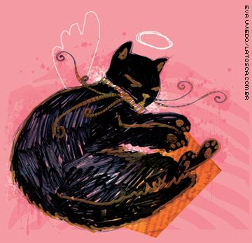 Salvem os gatos pretos!