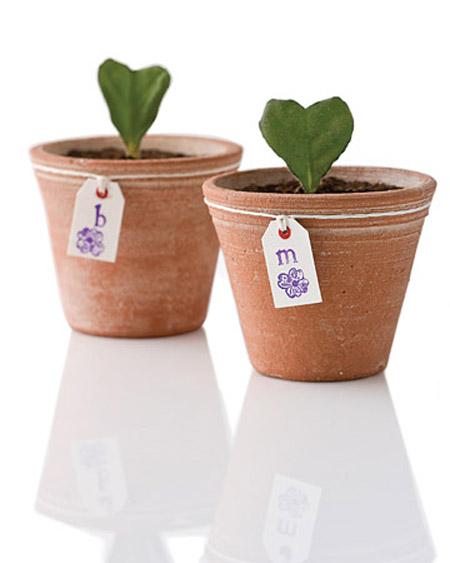 """Plantas são ótimas para enfeitar a casa e também dar de presente. Mas se quiser uma coisa mais personalizada, pode fazer algo como na imagem acima. É fácil, mas precisa ter paciência e um pouco de jeito para jardinagem. Essa folhinha em forma de coração que você vê aí é daquela planta chamada Violeta. No link """"tutorial folha coração"""" você aprende como faz"""