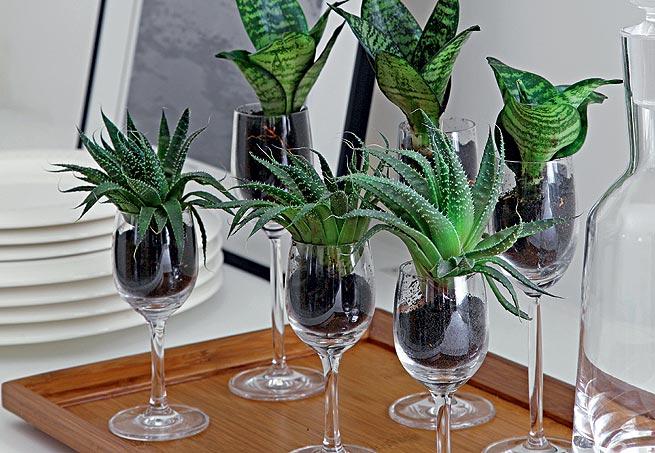 Taças - As taças que não forem entrar em uso também pode se transformar em vasos! Olha como fica lindo