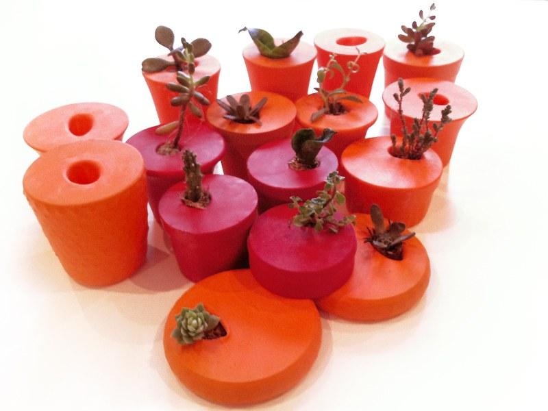 Vasinhos de bexiga