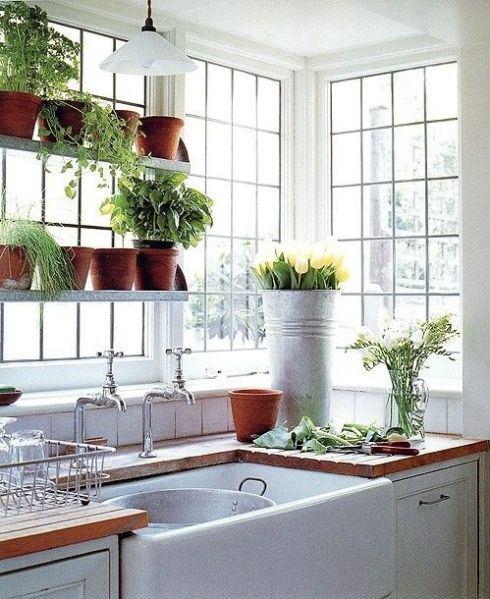 Plantas na cozinha são definitivamente uma boa idéia. Podem ser ervas como tomilho, alecrim e manjericão ou qualquer outra que você quiser e bem entender