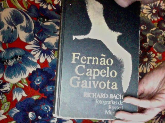 3- Um livro? Hmmm... Fernão capelo Gaivota, um romance americano dos anos 70