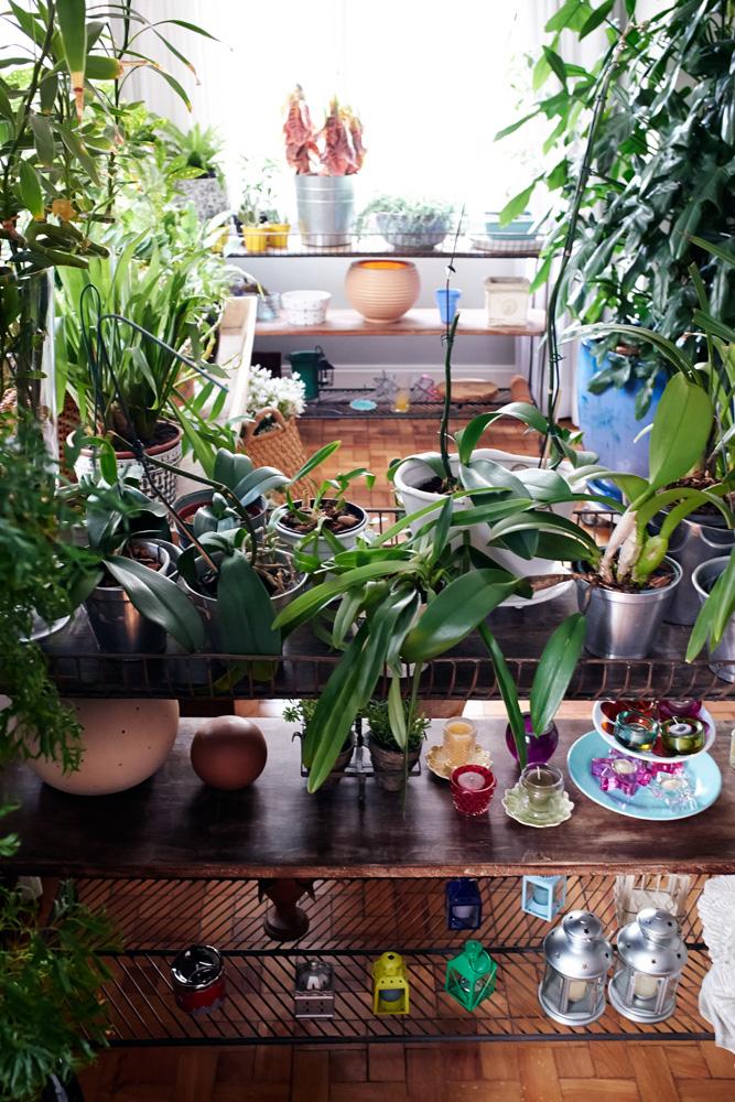 """Verde: O aparador com plantas é um mimo de Chris. """"Gosto muito de ficar cuidando, podando, trocando as plantas de vaso"""", conta"""