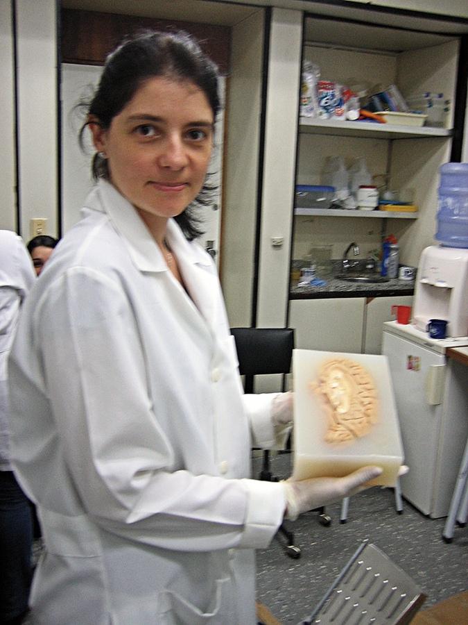 Mão na massa, literalmente: Suzana analisa um cérebro humano em laboratório