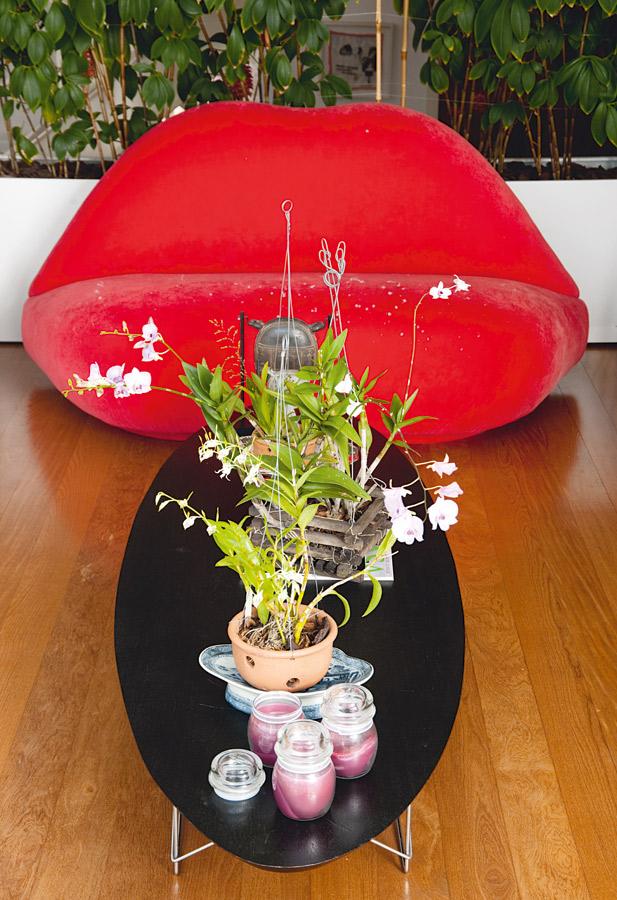 Kiss l O sofá em formato de boca era da época da adolescência. A mesinha Charles Eames abriga as orquídeas que floresceram