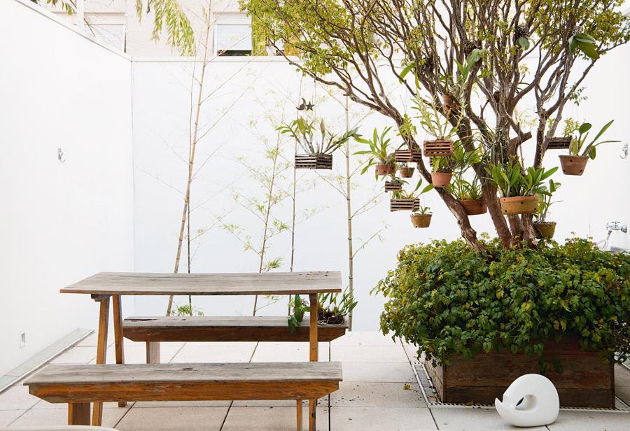 Lado de fora l No quintal, a jabuticabeira serve de suporte para a coleção de orquídeas. A mesa e os bancos de madeira vieram de Atibaia, da casa da mãe