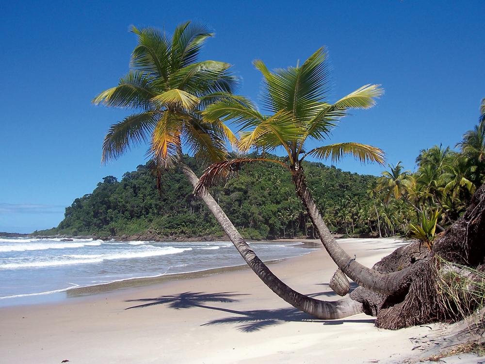 Engenhoca - Bahia: Itacaré tem várias praias com paisagens lindas para conhecer, muita onda para quem gosta de surfar e aquele clima delicioso da Bahia. Fui com um grupo de amigas pra lá, há alguns anos, e foi uma viagem deliciosa. Me encantei pela praia Engenhoca, que tem uma paisagem linda já na trilha que dá acesso a ela, assim como o entorno, que é bem deserto, cheia de coqueiros