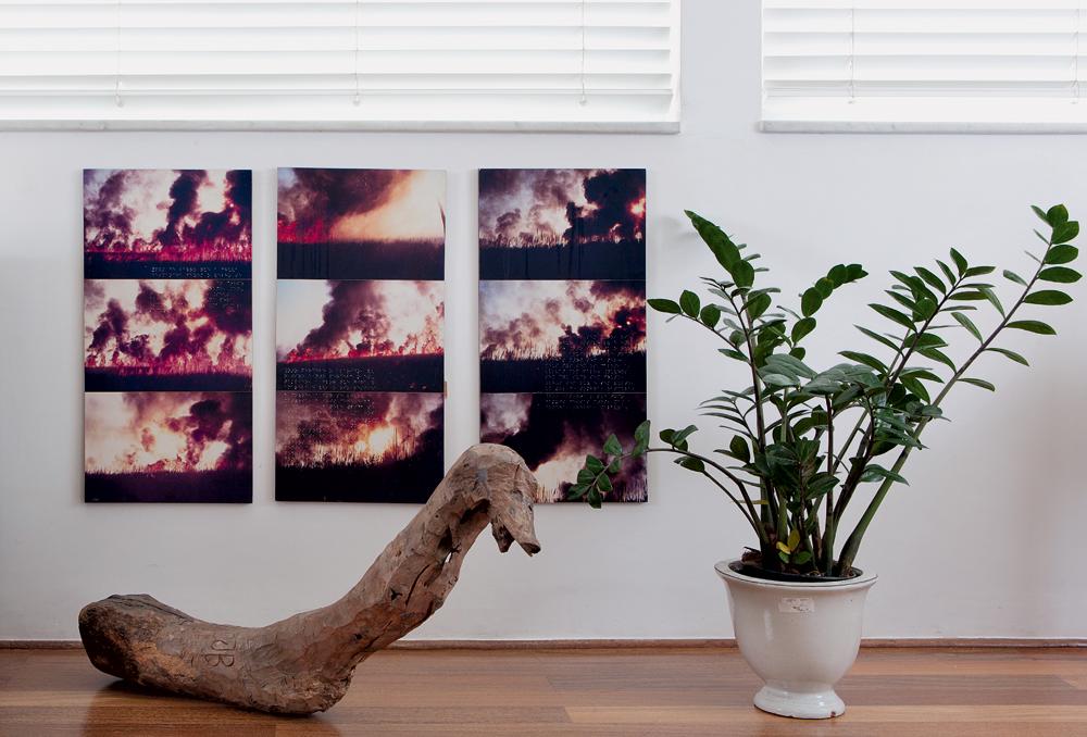 É um jacaré? -  Escultura do pernambucano José Bezerra e série de fotos de Nuno Ramos