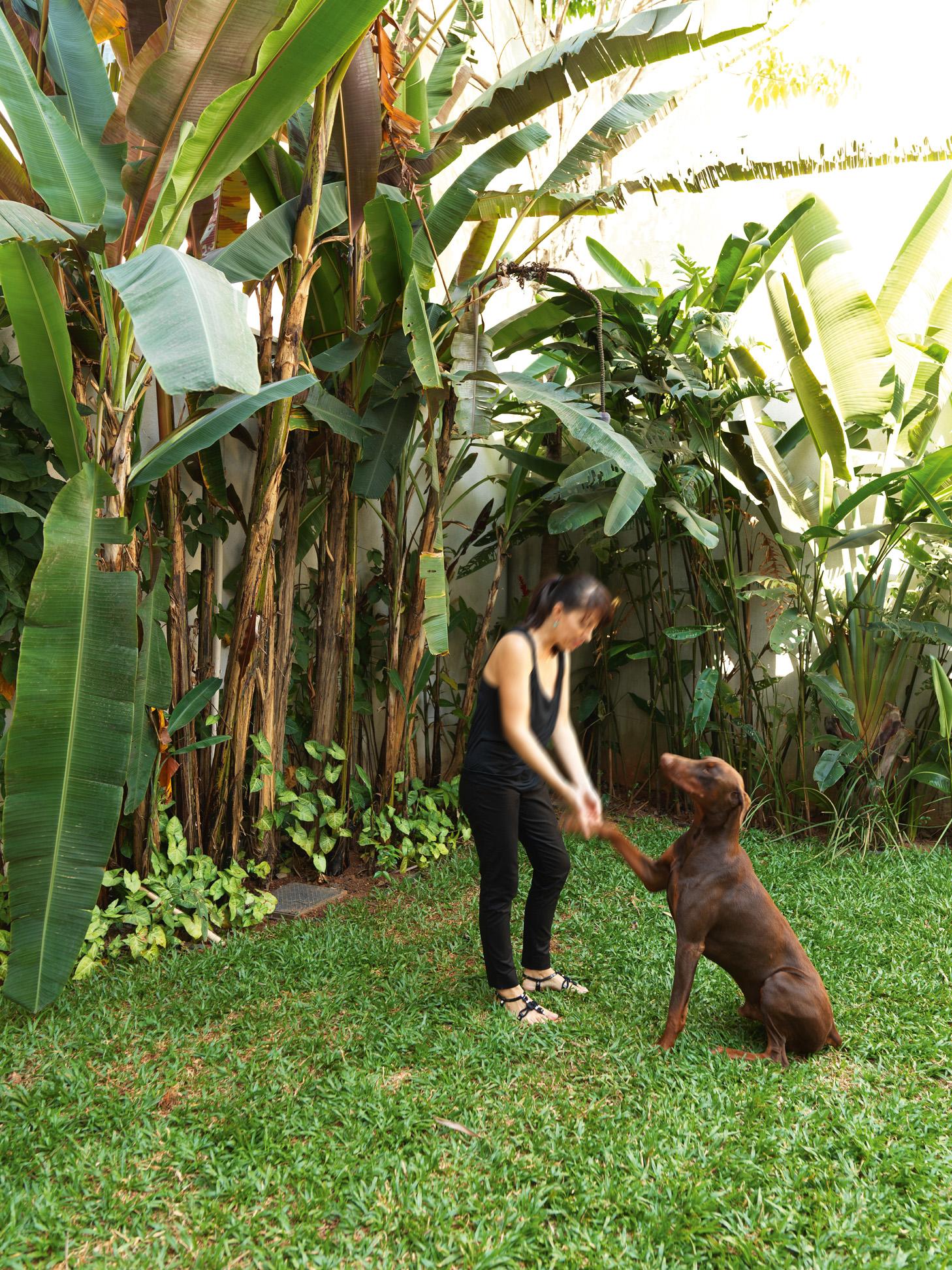 Companheiro - Lina e o dobermann Jack, 1 ano. O jardim foi feito pelo jardineiro e paisagista da casa, Carlos