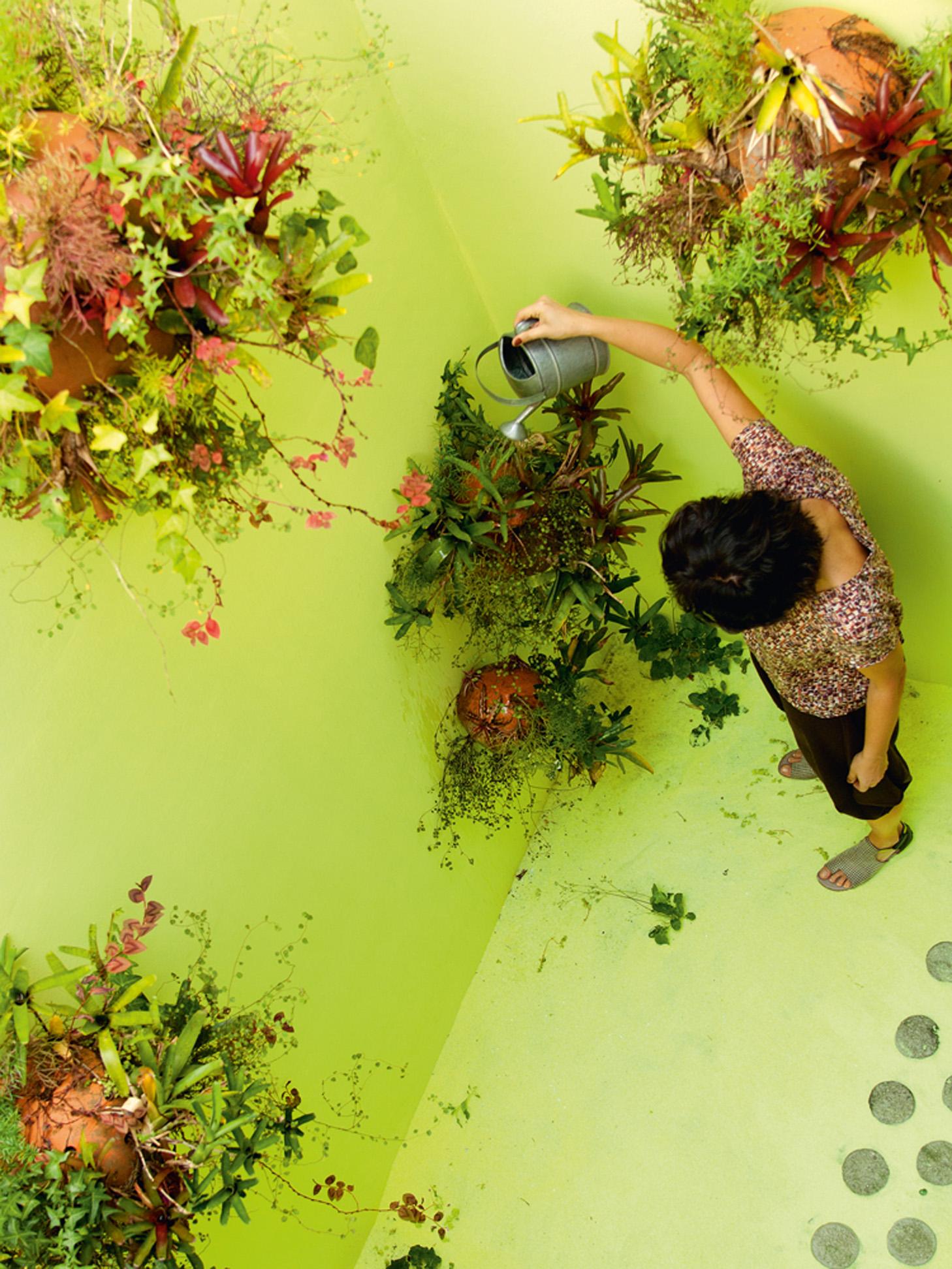 Obra viva - O jardim, uma obra do artista Fernando Limberger, é feito com plantas epífitas, areia amarela e se chama Verdura