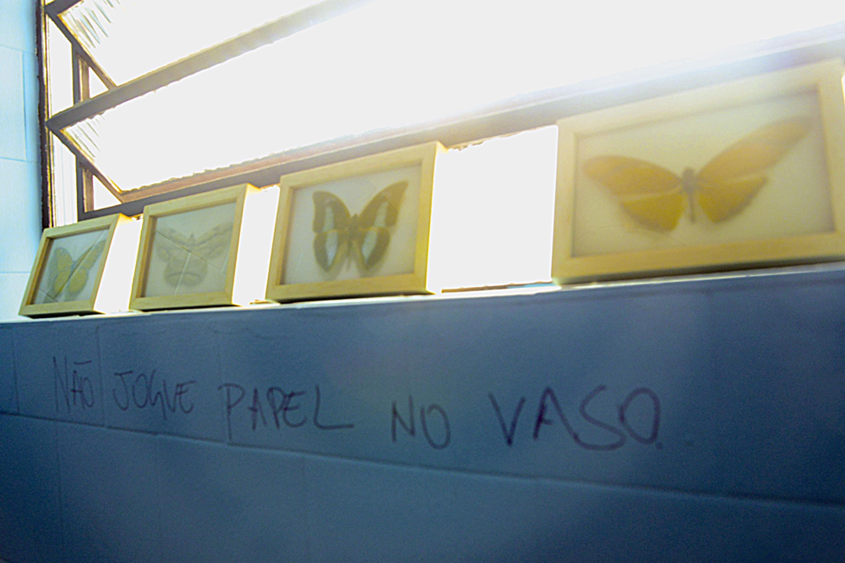 No lavabo, as fotos de borboletas são de Daniel Malva