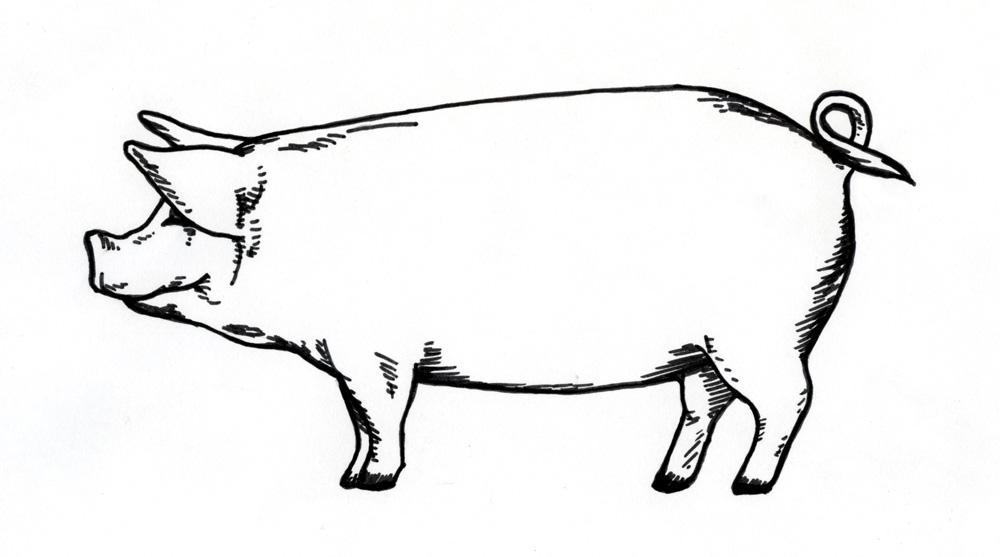 """""""Carne de porco é a mais gostosa do mundo! Mas, no dia a dia, como pouca carne e procuro ter uma alimentação mais leve, com massas, risotos e saladas. """""""