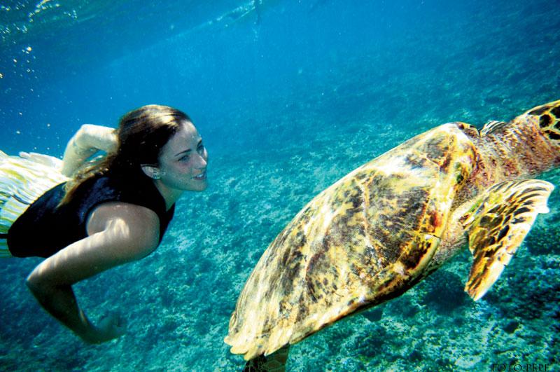 Letícia com a tartaruga que encontravam todo dia enquanto pegavam onda