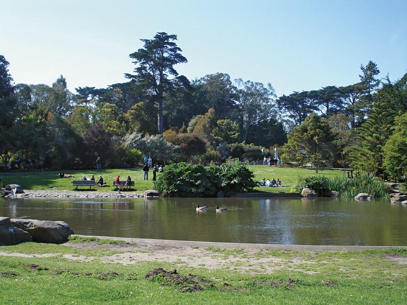 O Jardim Botânico
