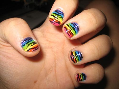 Zebra com fundo colorido