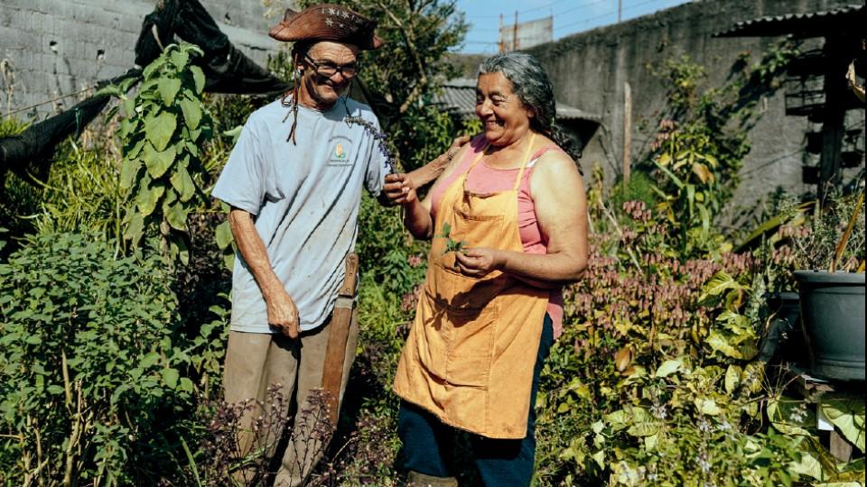 Acima, Genival e Sebastiana, donos de uma horta feita com a ajuda da ONG