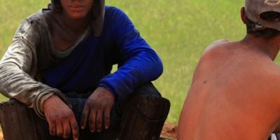 """Como uma praga transforma homens em """"animais"""" em Alagoas"""