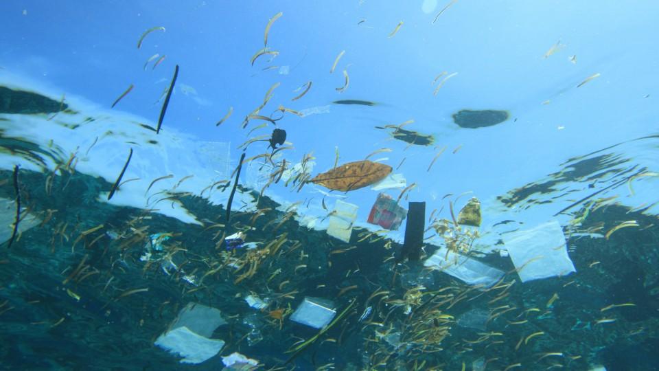 A gestão do lixo é precária, mas algumas iniciativas tentam mudar o cenário