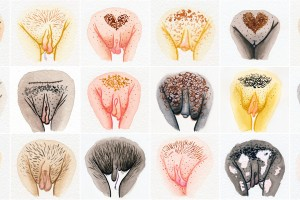 A maravilhosa diversidade de nossas vulvas