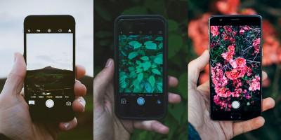5 apps para se reconectar com a natureza