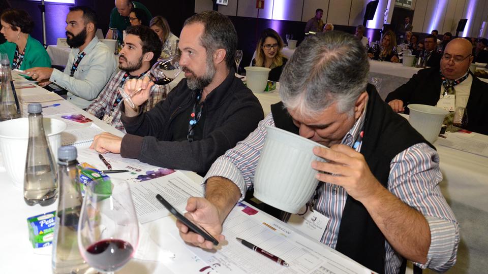 O repórter se mistura aos especialistas na Avaliação Nacional de Vinhos