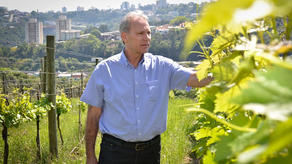 O pesquisador Jorge Tonietto, da Empraba, explicou as Indicações Geográficas dos vinhos gaúchos