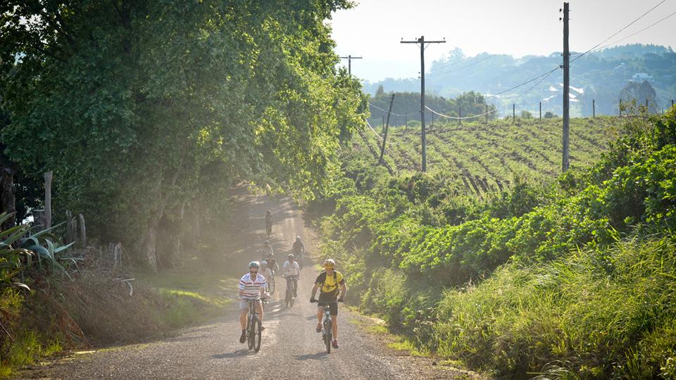 Passeio de bicicleta nos vinhos da vinícola Don Giovanni – só faltou esperar o pôr do sol