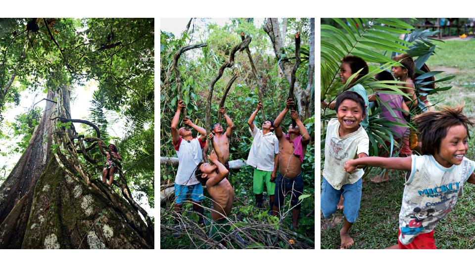 Garota sobe lateral da Samaúma apoiada em cipós; indígenas tomam água do cipó usado para cozinhar a ayahuasca; crianças brincando na aldeia Chico Curumim