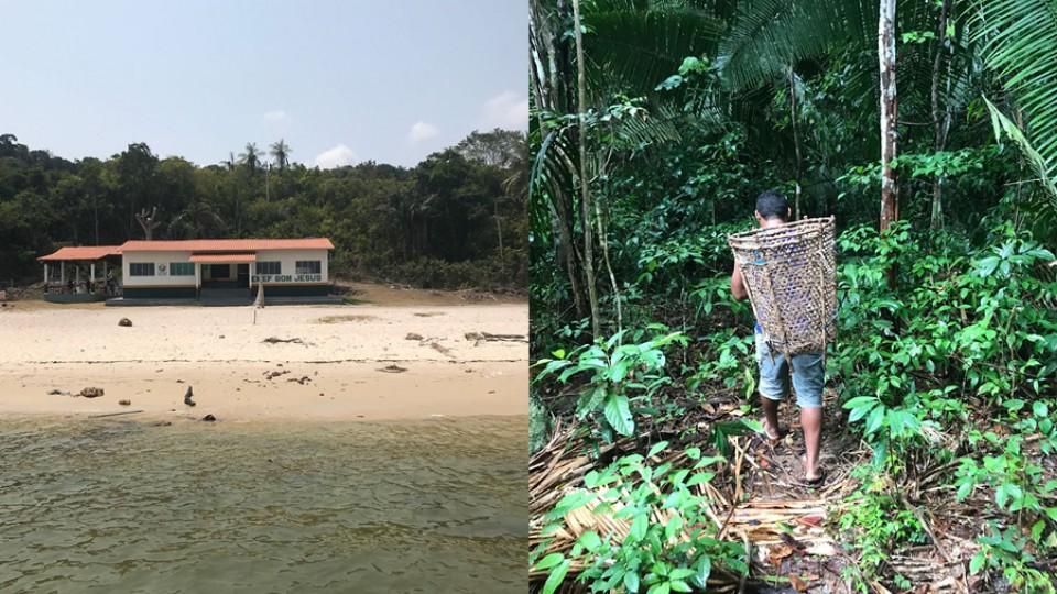 Escola ribeirinha em Altamira; Marlon colhe castanhas na floresta