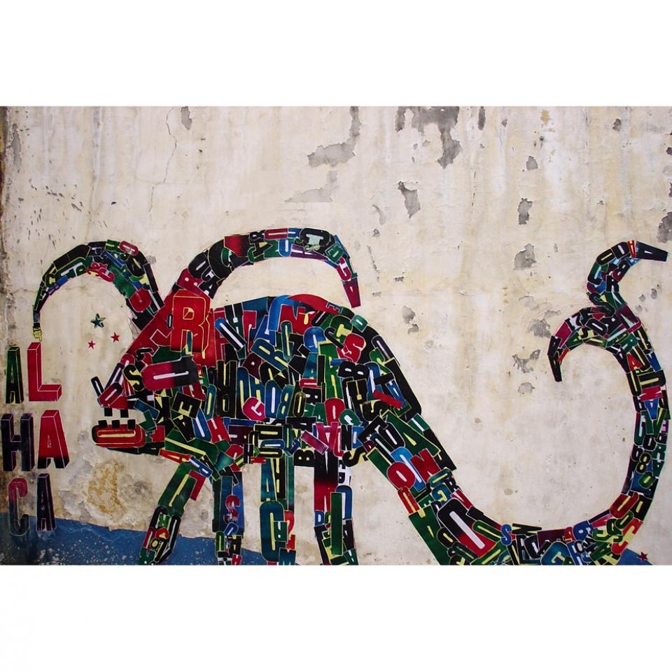 Os monstros das obras de Fefê Talavera são metáforas de emoções fortes do subconsciente humano. É por meio dos animais fantásticos e coloridos que ela se conecta com seu interior