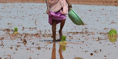 É a mulher quem carrega a água do mundo na cabeça